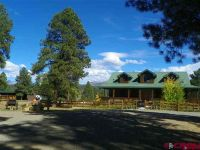 Home for sale: 101 Buckboard Pl. Pl., Pagosa Springs, CO 81147