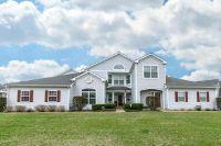 Home for sale: 338 Cascade Ln., Oswego, IL 60543