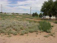 Home for sale: 24255 N. Riviera Avenue, Paulden, AZ 86334