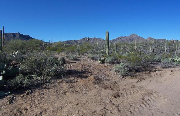 3785 N. Avenida Dos Vistas, Tucson, AZ 85745 Photo 11