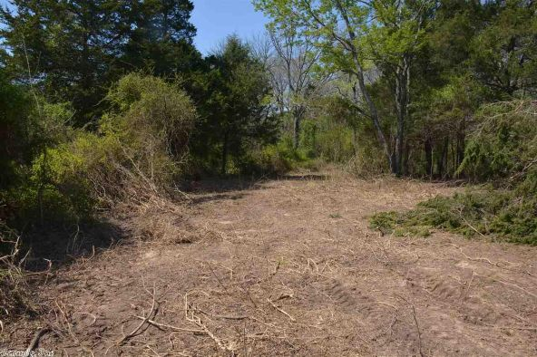 9 Ac Brownsville Rd., Greers Ferry, AR 72067 Photo 9