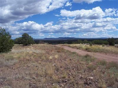 204 Juniperwood Rnch Un 3 Lot 204, Ash Fork, AZ 86320 Photo 12
