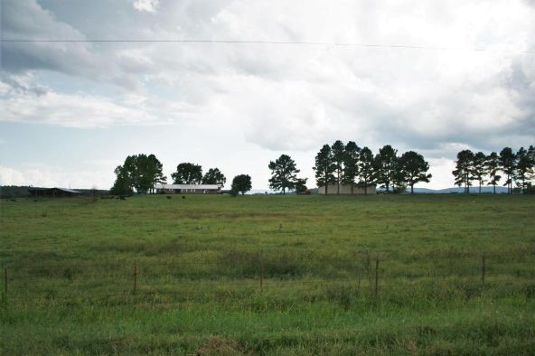 13142 Cedar Creek Rd., Belleville, AR 72824 Photo 5