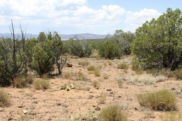 3 Stockman, Ash Fork, AZ 86320 Photo 4
