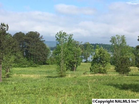 10 County Rd. 67, Langston, AL 35755 Photo 5