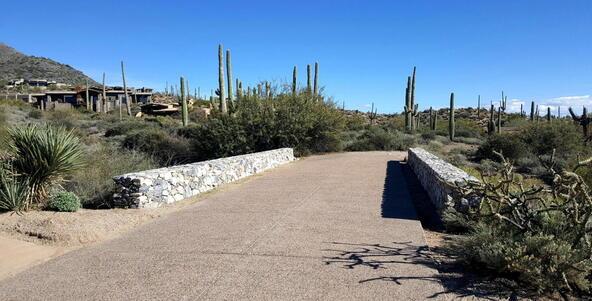 41927 N. Saguaro Forest Dr., Scottsdale, AZ 85262 Photo 22