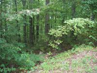 Home for sale: Lot 69 Mountain Crest Dr., Marion, NC 28752