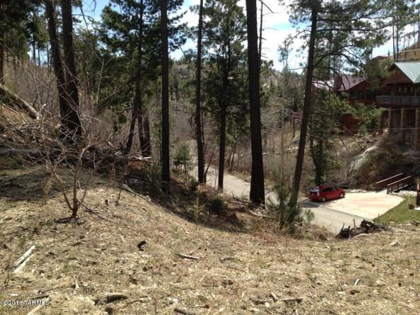 11081 E. Turkey Run, Mount Lemmon, AZ 85619 Photo 2