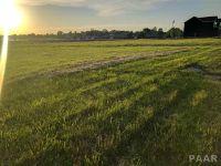 Home for sale: 1523-1537 S. Missouri, Morton, IL 61550