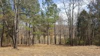 Home for sale: Lot 17 Woods Of Lakeview Ct., Falls Of Rough, KY 40119