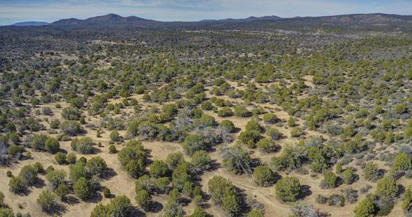 11100 W. Rawhide Trail, Skull Valley, AZ 86338 Photo 21