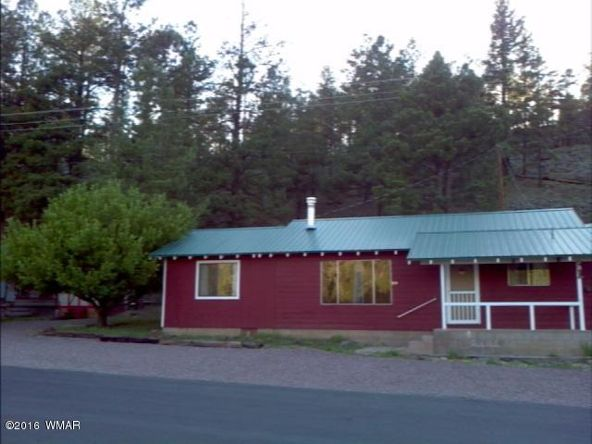119 County Rd. 1120, Greer, AZ 85927 Photo 22