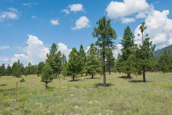 8r Lockett Ranches, Flagstaff, AZ 86001 Photo 17