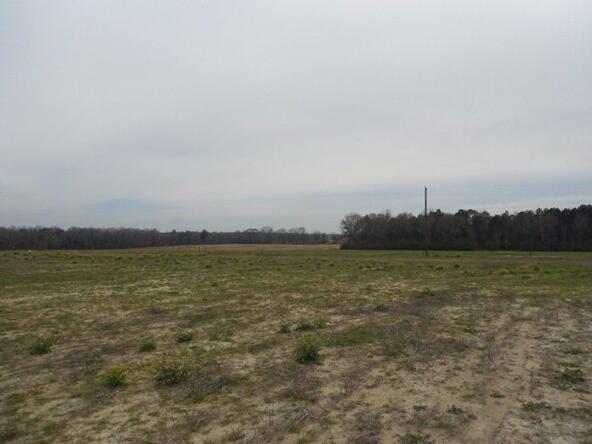 7 Acres Hardy Rd., Rehobeth, AL 36301 Photo 19