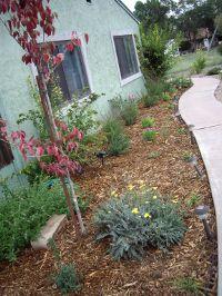 Home for sale: 243 S. Papago, Springerville, AZ 85938