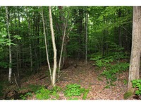 Home for sale: Lot 2 Morin Dr., North Troy, VT 05859