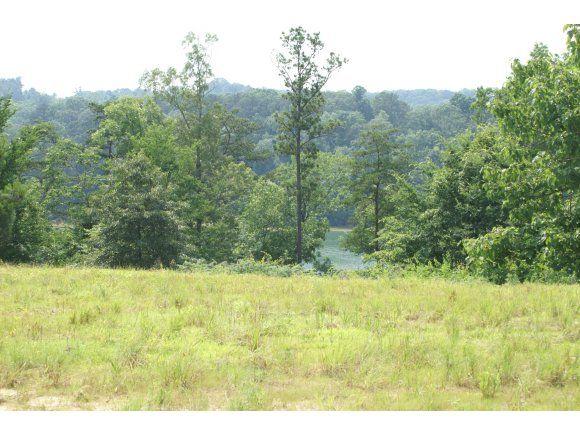 234 Co Rd. 907 (Lot 9), Crane Hill, AL 35053 Photo 2