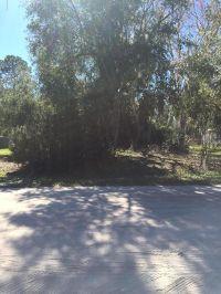 Home for sale: 215 Palmway Dr., Satsuma, FL 32189