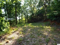 Home for sale: Parcel 062.04 Greasy Cove Rd., Cosby, TN 37722