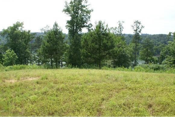 250 Co Rd. 907 (Lot 10), Crane Hill, AL 35053 Photo 2