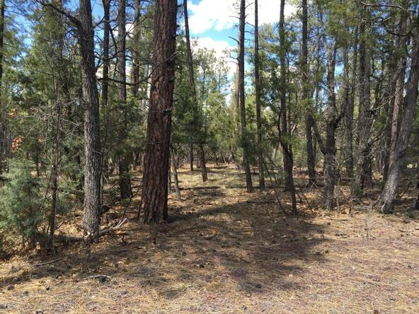 790 W. Pine Spruce Ln., Pinetop, AZ 85935 Photo 3