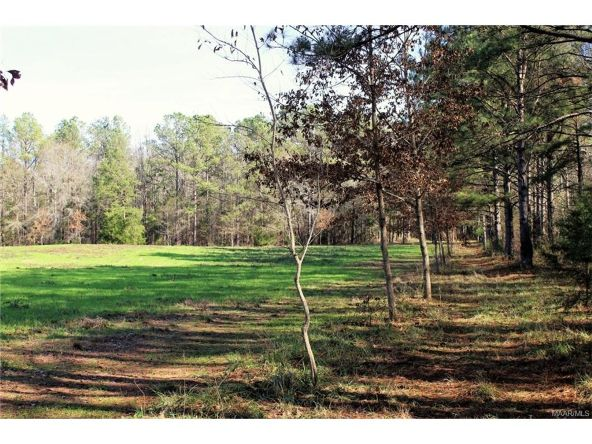 106 106 Hwy., Evergreen, AL 36401 Photo 10