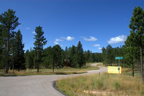 Lot 4, Powder House Trail, Lead, SD 57754 Photo 5