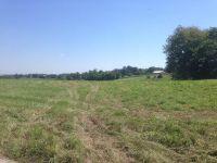 Home for sale: 13888 Peach Grove Rd., California, KY 41007