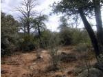 1336 Clear Creek, Prescott, AZ 86301 Photo 2