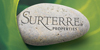 Surterre Properties Inc