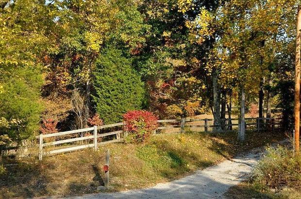 Scrubgrass, Danville, KY 40423
